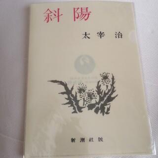 ファイル501円(クリアファイル)