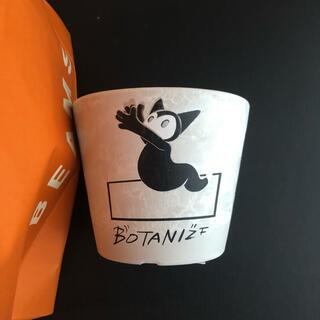 ビームス(BEAMS)の限定 Lotta  BOTANIZE  鉢小 ボタナイズ BEAMS ビームス(花瓶)