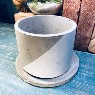 プランター 植木鉢 セメント ホワイト(プランター)