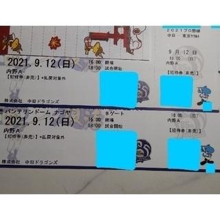 野球観戦   ペア  チケット(その他)