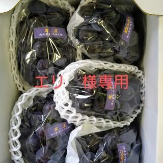 エリ様専用 ブドウ 岡山県産 紫玉2k 1箱(5〜6房入)(フルーツ)