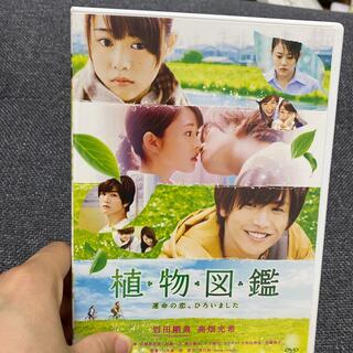サンダイメジェイソウルブラザーズ(三代目 J Soul Brothers)の植物図鑑 運命の恋、ひろいました DVD(日本映画)