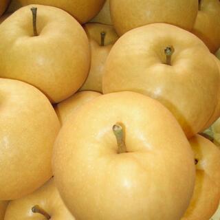 【 新高梨 秀品 大玉 3キロ】★果汁たっぷり秋の果物★ にいたかなし フルーツ(フルーツ)