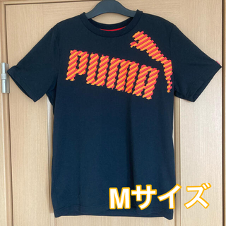 プーマ(PUMA)のプーマ ドライTシャツ Mサイズ(その他)