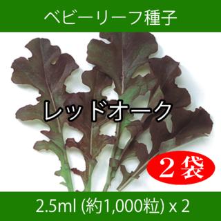 ベビーリーフ種子 B-02 レッドオーク 2.5ml 約1,000粒 x 2袋(野菜)