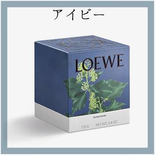 ロエベ(LOEWE)の新品 LOEWE ロエベ キャンドル アイビー 170g スモールサイズ(キャンドル)