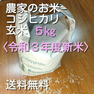農家直送 新米 令和3年コシヒカリ 玄米 約5kg 送料無料(米/穀物)