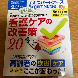Expert Nurse (エキスパートナース) 2018年 01月号(専門誌)