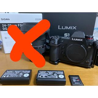 Panasonic - 【美品】LUMIXS1 xqd120gb L型プレート付き