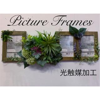 光触媒加工 抗菌消臭ウォールグリーン Picture Frames(その他)