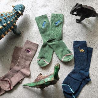 こどもビームス - dinosaur socks 3set