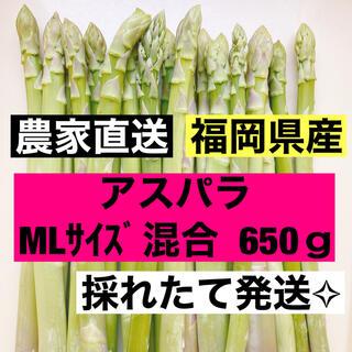 アスパラ MLサイズ(訳あり品)650g 即購入OKです(野菜)