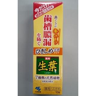 小林製薬 - 小林製薬  生葉Hc 試供品10g
