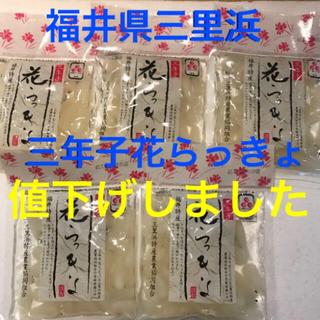 漬物 おつまみ ご飯のお供 カレーに♡  福井県産 三年子 花らっきょ 5袋(漬物)