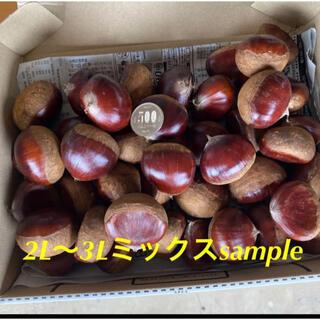 即購入OK☆茨城県笠間産☆無農薬生栗1kg(フルーツ)