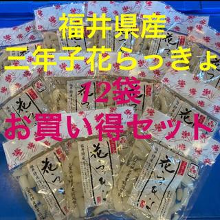 漬物 おつまみ ご飯のお供 カレーに♡    福井産 三年子 花らっきょ 12袋(漬物)