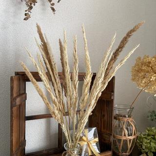 ドライフラワー  スワッグ ナチュラル花材 秋カラー 韓国インテリア(ドライフラワー)