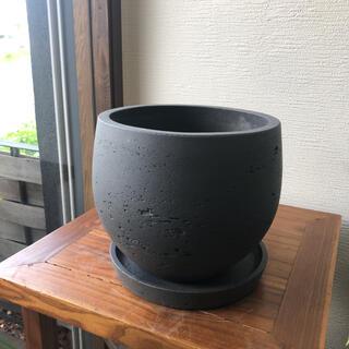 黒い大きい植木鉢(プランター)