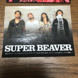 SUPER BEAVER ステッカー(ミュージシャン)