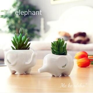 ¤ ぞう 植木鉢 ¤ 鉢植え 動物  象 多肉植物 サボテン 北欧(プランター)