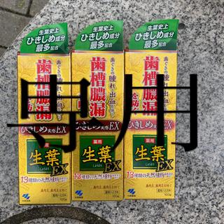 コバヤシセイヤク(小林製薬)のraposoniul様専用です。小林製薬 薬用歯磨き 生葉EX 100g  3個(歯磨き粉)