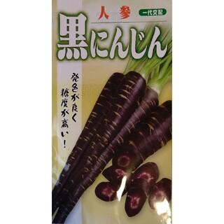 黒ニンジン 野菜種 家庭菜園 にんじん プランター(野菜)