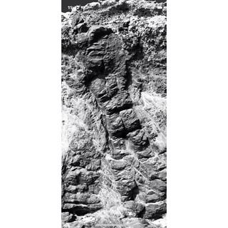 ストーンアイランド(STONE ISLAND)のM 1990 ICE CAMO Coverall Jacket hunting(カバーオール)