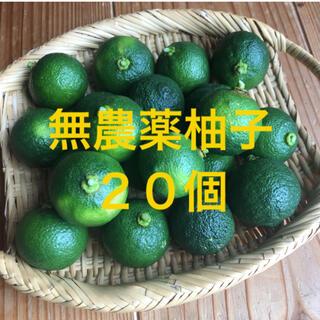 無農薬 青柚子  青ゆず 20個+おまけ(フルーツ)