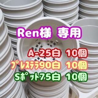 プラ鉢2.5号鉢【A-25】10個 他 スリット鉢 丸 プレステラ 多肉植物(プランター)