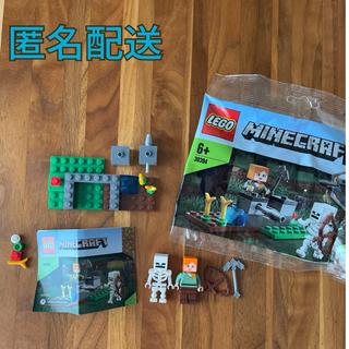 レゴ(Lego)のレゴ LEGO マインクラフト 30394(その他)