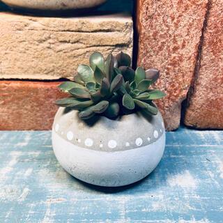 コロンと丸いプランター 植木鉢 キャンドルスタンド ドット(プランター)