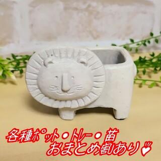 【ライオンさんのポット】 植木鉢 プランター 多肉植物 寄せ植え(プランター)