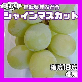 ❤️鳥取県産❤️シャインマスカット 4房 糖度18度前後 ぶどう 葡萄(フルーツ)