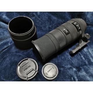 シグマ(SIGMA)のゆか様専用 SIGMA APO 150-500mm F5-6.3 Canon(レンズ(ズーム))