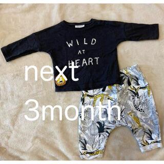 ネクスト(NEXT)の美品 nextセットアップ(Tシャツ)