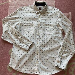 TAKEO KIKUCHI - タケオキクチ シャツ