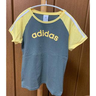アディダス(adidas)の【お買得】 Mサイズ DANLOP テニスウェア レディース  Tシャツ(ウェア)