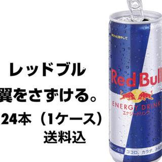 Red Bull レッドブル エナジードリンク 250ml ×24本 新品
