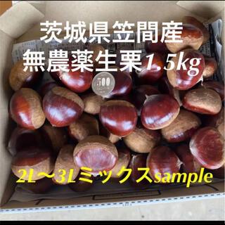 茨城県笠間産無農薬生栗1.5kg 2L〜3Lミックス(フルーツ)