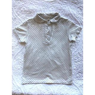 海外ブランド Acoola Tシャツ ブラウズ 120cm(Tシャツ/カットソー)