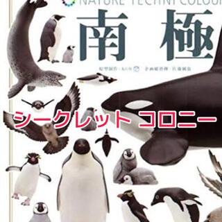 カイヨウドウ(海洋堂)の南極 ガチャ コウテイペンギン シークレット コロニー(その他)