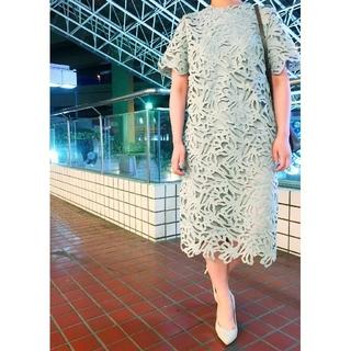 ダブルスタンダードクロージング(DOUBLE STANDARD CLOTHING)のアダムエロペワンピFRAY I.DセルフォードELINアパルトモンBLAMINK(ひざ丈ワンピース)