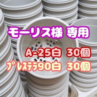 プラ鉢2.5号鉢【A-25】30個 他 スリット鉢 丸 プレステラ 多肉植物(プランター)