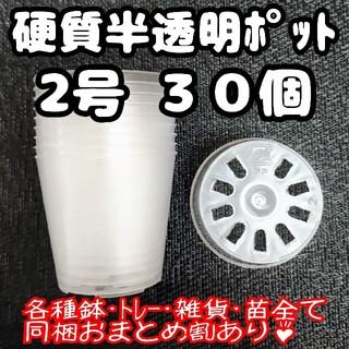 硬質半透明ポリポット 2号 30個 プラ鉢 多肉植物 プレステラ(プランター)