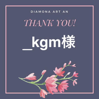 _kgm様 ダイヤモンドアート(アート/写真)