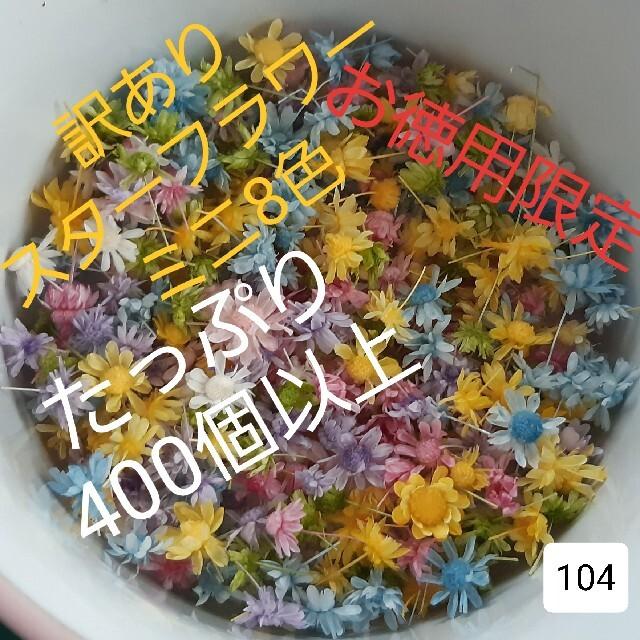 訳あり104スターフラワーミニ8色 400個以上 ハンドメイドのフラワー/ガーデン(ドライフラワー)の商品写真