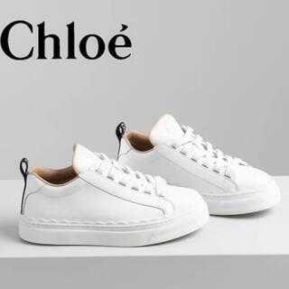 Chloe - Chloe スニーカー クロエ