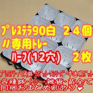【スリット鉢】プレステラ90白24個+専用システムトレー:ハーフ2枚プラ鉢多肉(プランター)