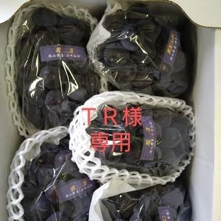 TR様 専用 ブドウ 岡山県産 紫玉2k 1箱(5〜6房入)(フルーツ)