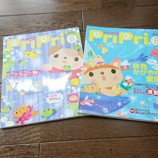 PriPri 6月号、8月号 2010(専門誌)